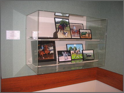 Display Case by Advanced Plastic Fabrications